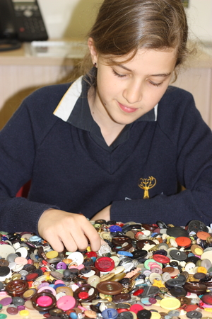 Grade five student Mia Rom counts a small sample of buttons collected. Photo by Jessica Seignarack